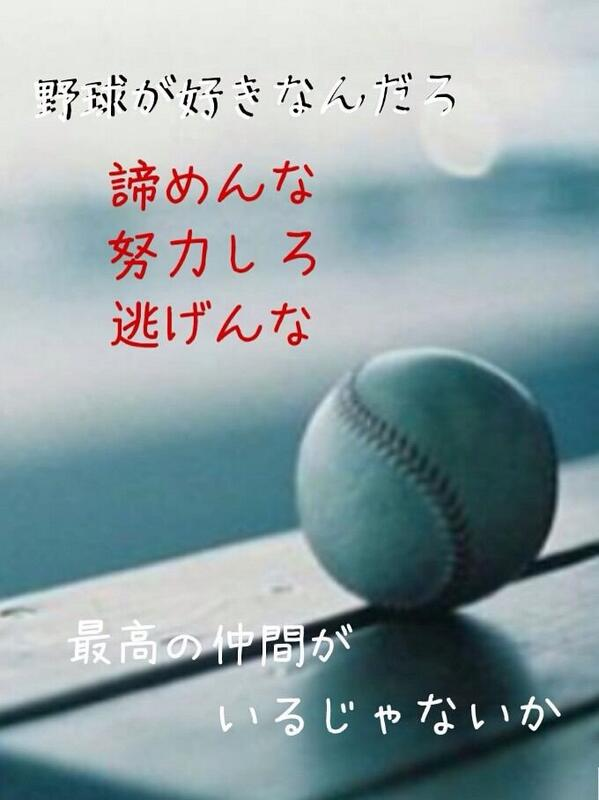 野球大好き.野球垢 followed