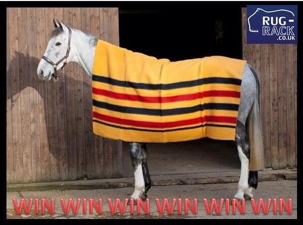 Rug Rack Co Uk On Twitter Win Fal Pro Newmarket 100 Wool Blanket Worth 69 95 Retweet To Enter Winner Picked At 1000 Followers