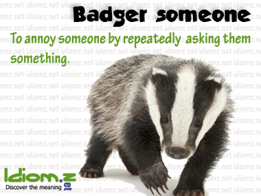 [Learn English Animals 2] BADGER - How to each animals for ...