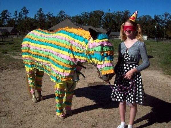 Pinata Horse Costume The Horse as a Piñata