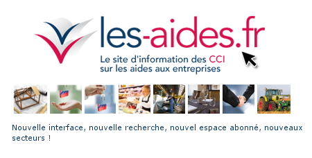 Thumbnail for Le Journal des CCI de France #5