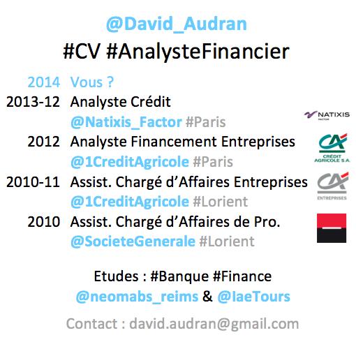 CV d'un Analyste Financier publié sur Twitter (@David_AUDRAN)