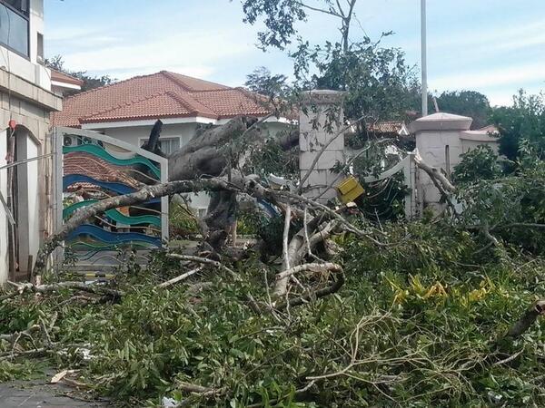 Boracay Island: Damage from #YolandaPH (source: http://t.co/Tq3GJfx9PZ) (story: http://t.co/U2yeP0rTqt) http://t.co/N83YLC3P4a