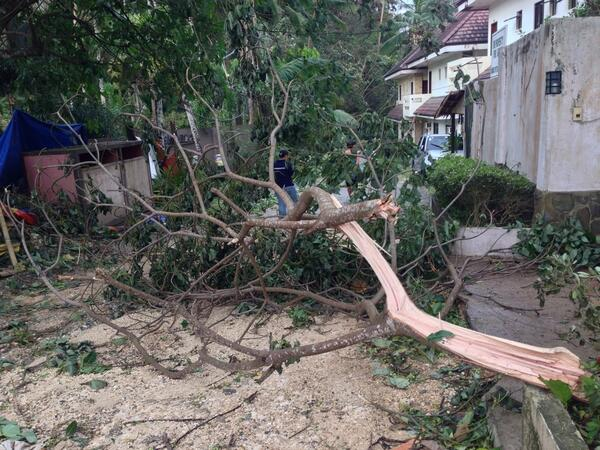 #Boracay #aftermath roads are not visible @ancalerts  #YolandaPH  #tawhay http://t.co/Pqig45EA4l