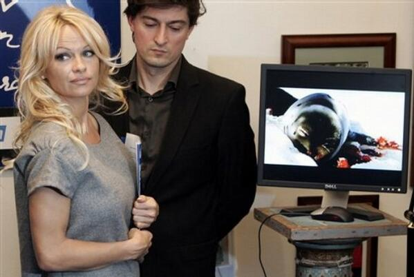 Pamela Anderson struggled with finances in 2013
