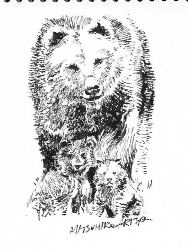 『ファオランの冒険』公式サイト更新。よみもの「クマの子育て」絵・文 有田満弘を追加しました