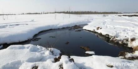 Twitter / GreenpeaceAustP: An #oilspill at Prirazlomnaya ...