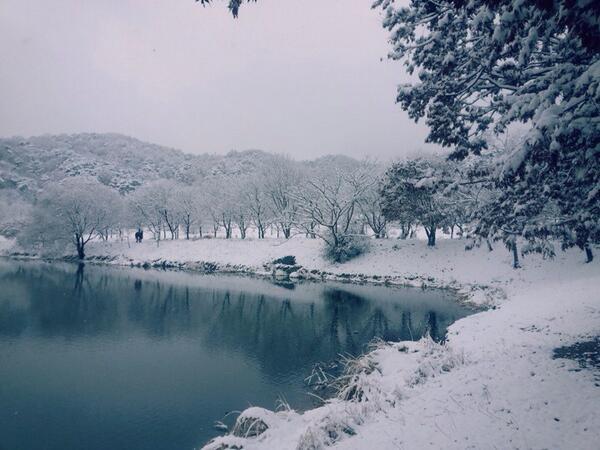 저희 외삼촌이 청주 상당산성에서 첫눈 소식을 보내왔네요..여기 수원은 날씨만 좋은데 .... http://t.co/cWOf3ORZYM