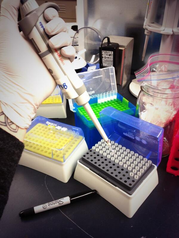 Pipetting like it's my job! ...oh wait it is. #ManicureMonday #Science #LabHard http://t.co/ogpK3gSYIA
