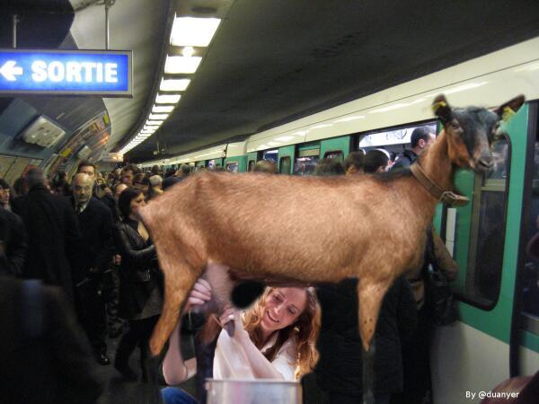 Nkm rencontre metro