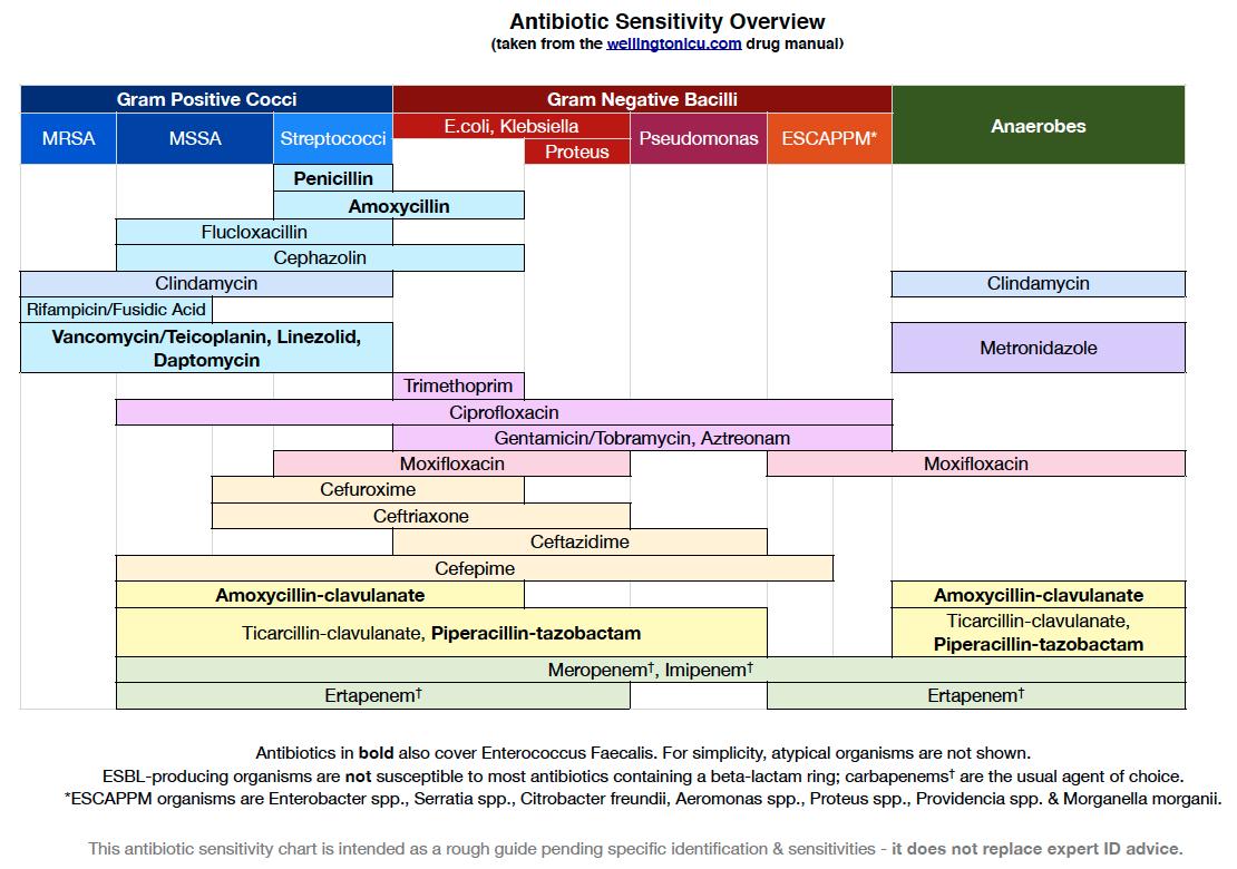 Spectrum Antibiotics