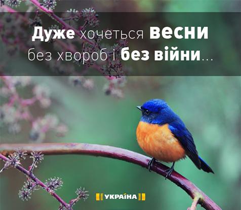 Террористы сосредоточили огонь на Донецком направлении, - пресс-центр АТО - Цензор.НЕТ 4595