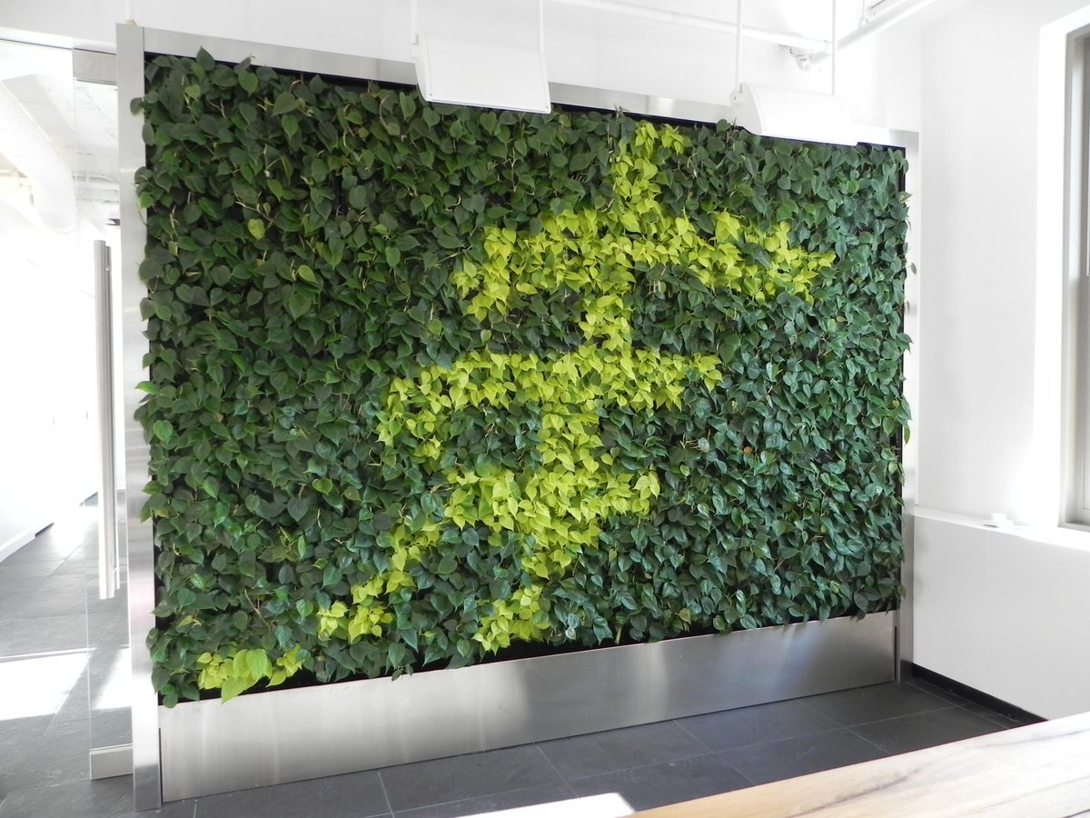 Greenify your followers by RTing this pic of a double-sided green wall #GreenWallWednesday http://t.co/XTh4B4kq7C
