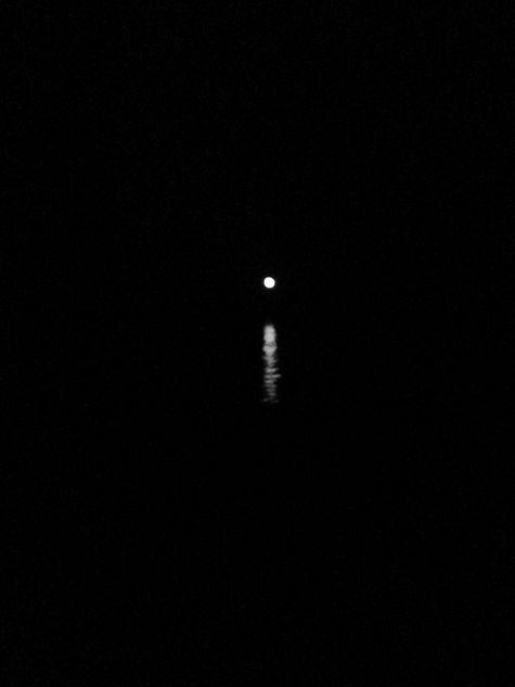 Ha voce il buio di bùccina soffiata  @cristinabove #UniversoVersi http://t.co/bfGt4LfOri