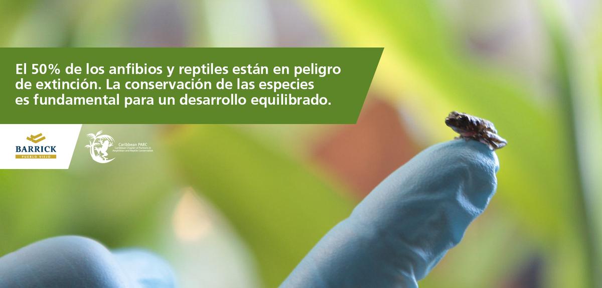 Nuestro programa de Compensación de Biodiversidad es un legado para la comunidad científica de #RD y el Caribe. http://t.co/ylo9QWAluY