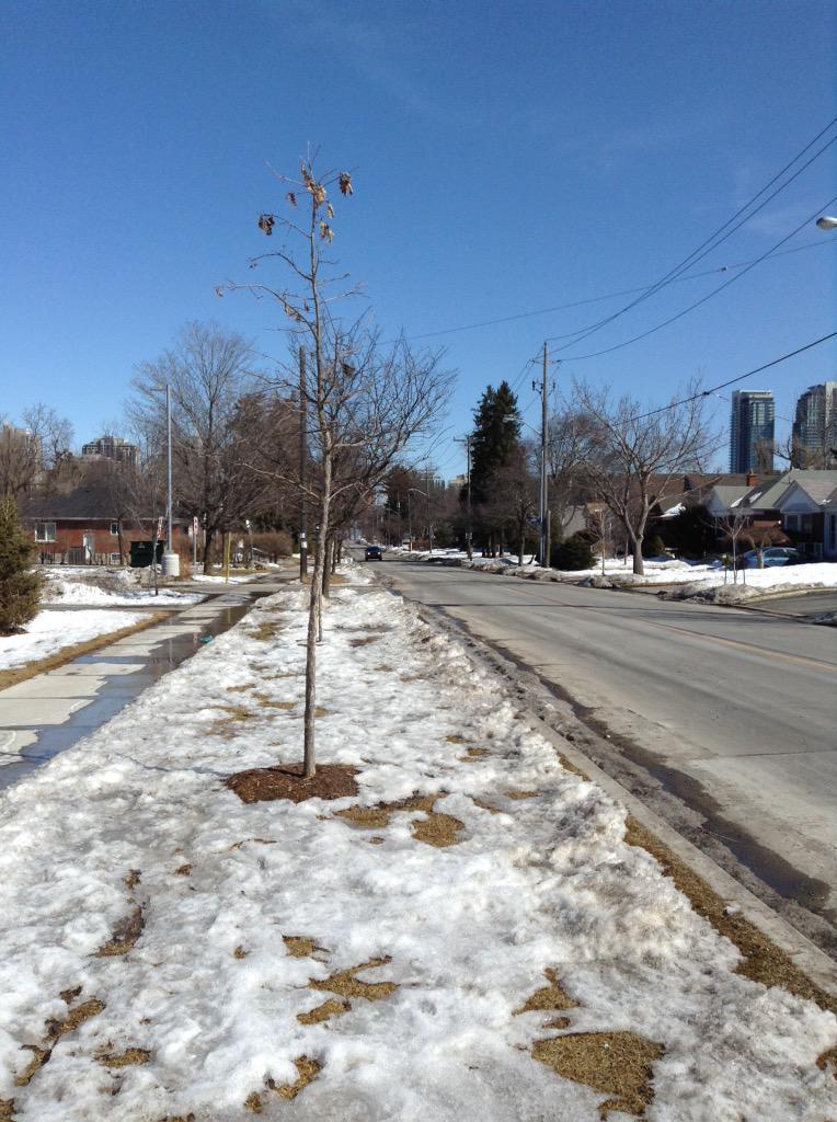 residential street and sidewalk