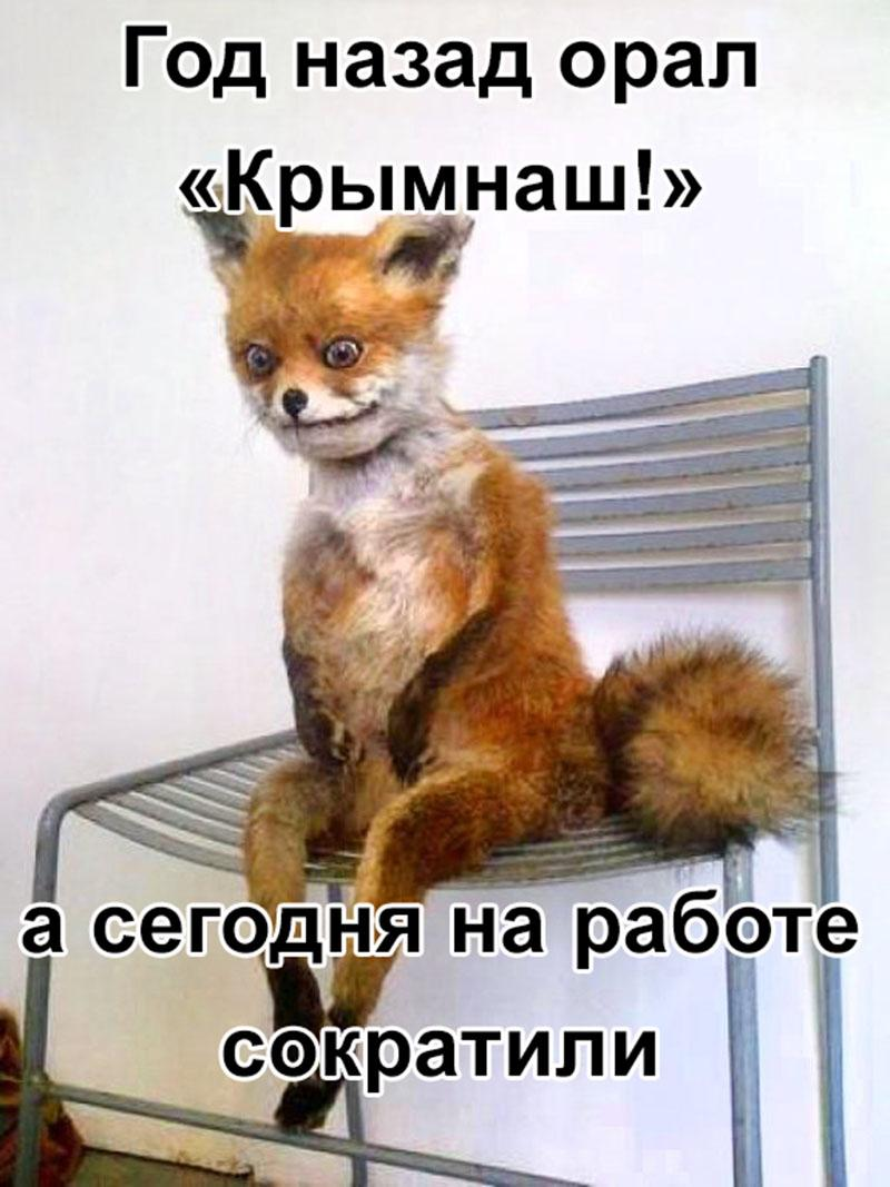 Правоохранители предотвратили теракт в Артемовске, - МВД - Цензор.НЕТ 4854