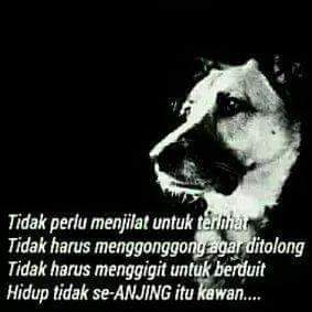 quotes of the day on hidup tak seanjing itu