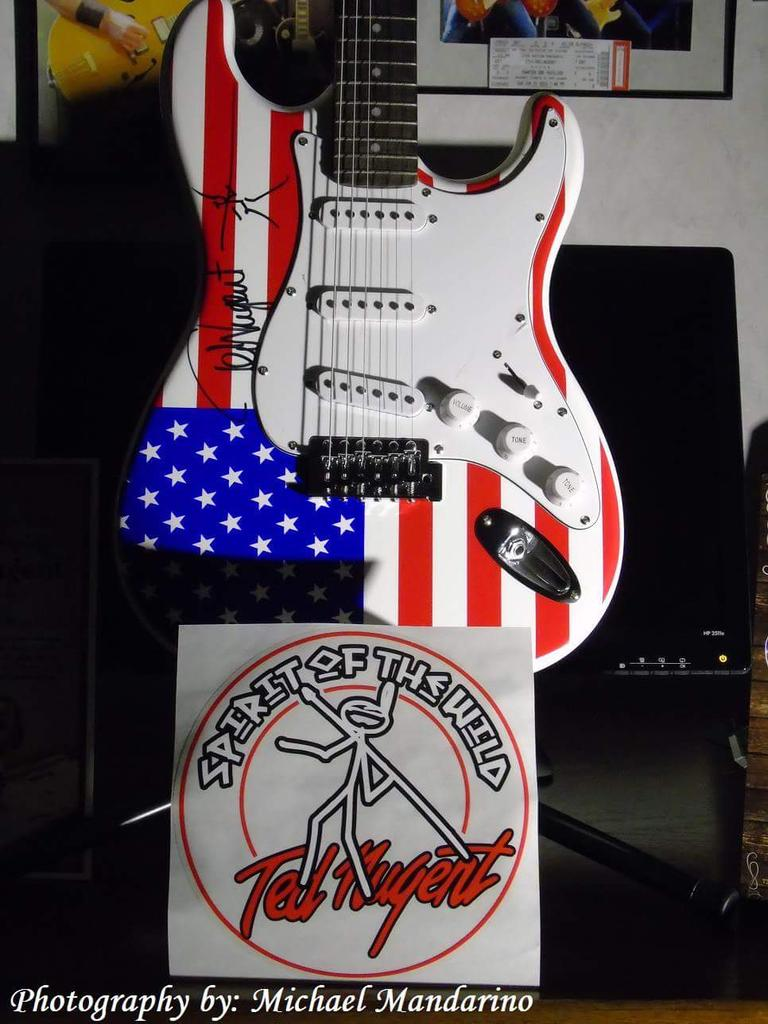 Ted Nugent Stars and Stripes Guitar