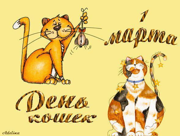 Смешные картинки с днем кошек