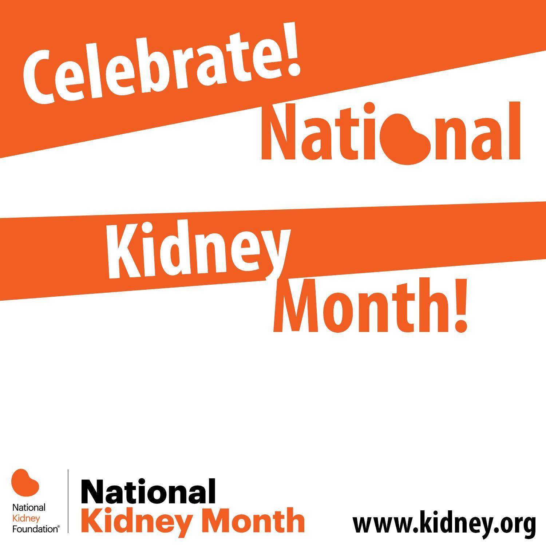 an essay on kidney