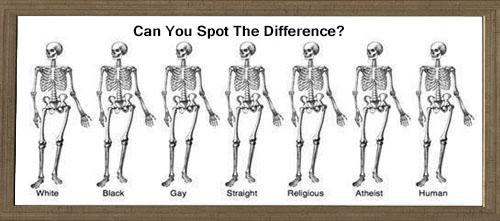 Can you spot the difference? If you can, stop following me. If you can't RT and spread the #Love http://t.co/FCscgDD76K