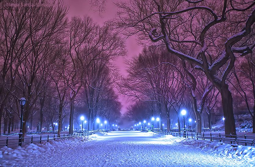 Central Park is beautiful & peaceful in the night snow. #NYC #winter http://t.co/4ieUQEY5RT