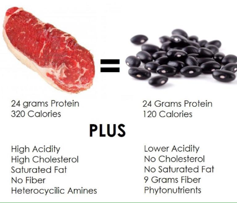 Still surprised that so many educated people believe they must eat meat for protein,  #MeatlessMonday http://t.co/MaJPRZNKMM