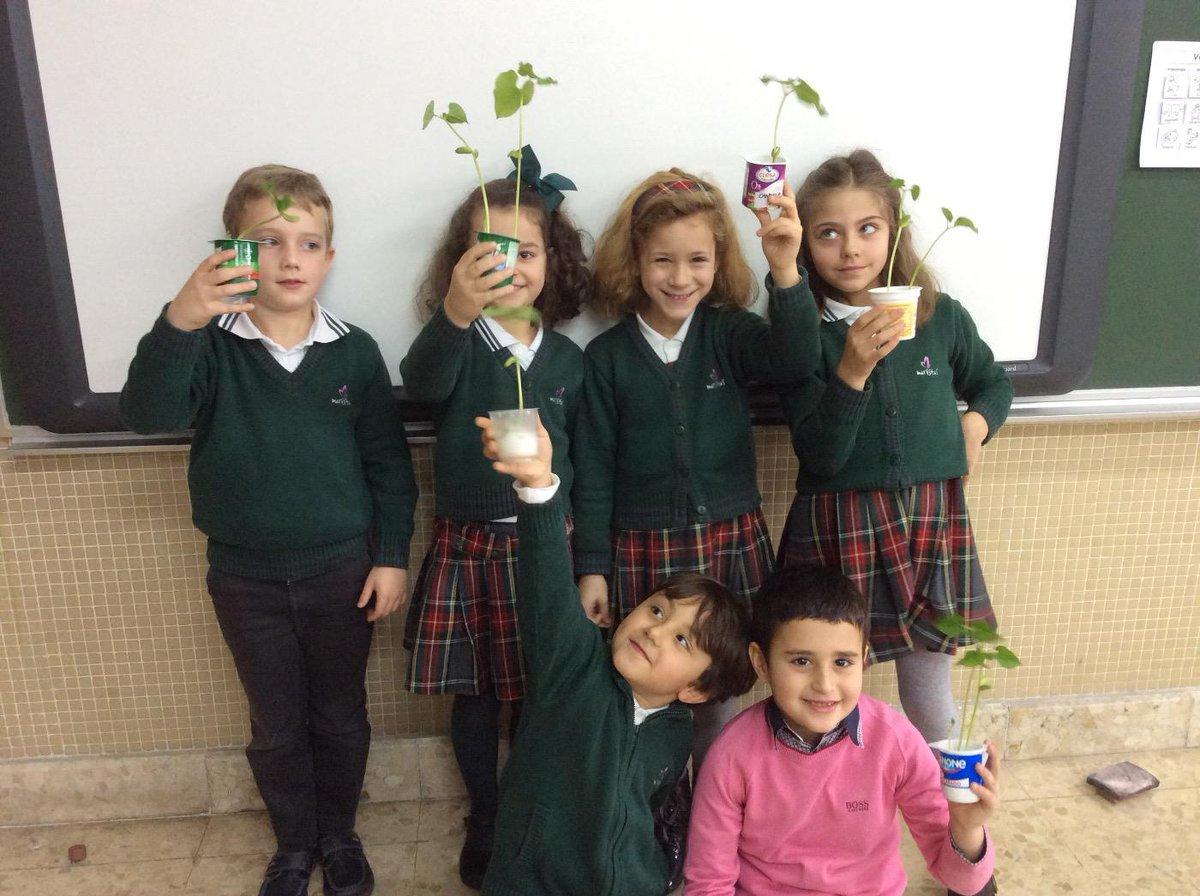Inteligencia naturalista. Sembramos una planta. Natural science 1A EP #ourenseenruta http://t.co/ObQJ5dpi03