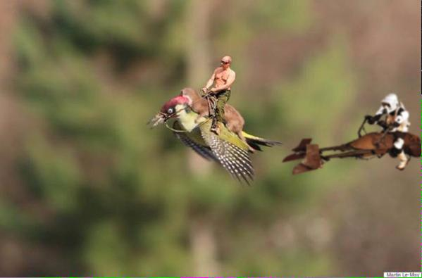 Hello Christmas Card picture. #WeaselPecker http://t.co/L6rO7YjWts