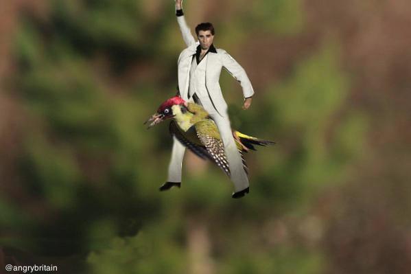 """Los mejores """"memes"""" de la foto del """"#WeaselPecker"""" con una comadreja en el lomo http://t.co/Y0ETqgeZ19 http://t.co/GI37C2TSVn"""
