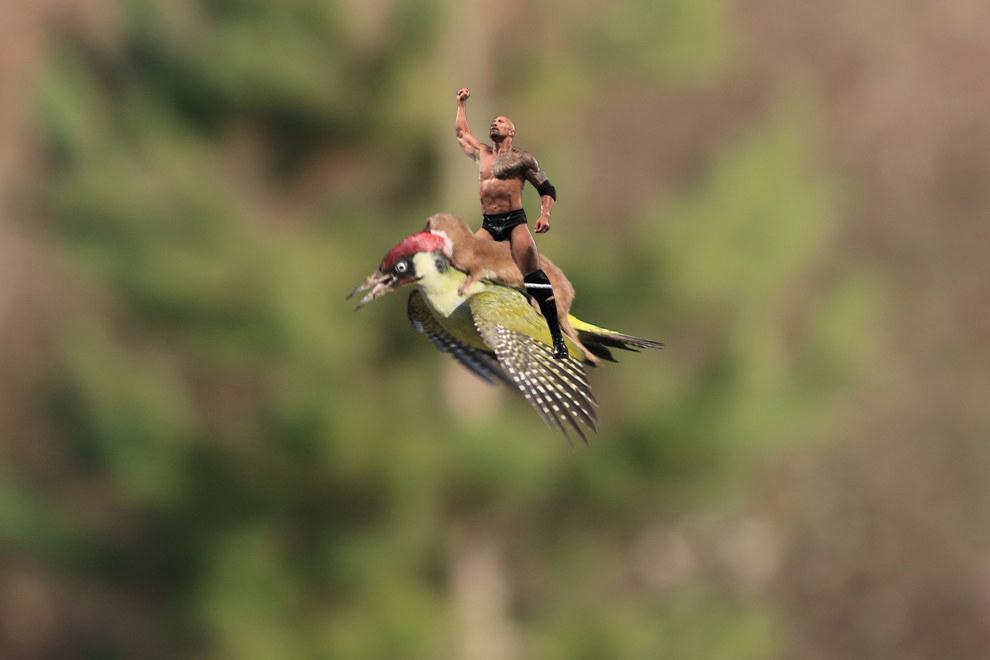 RT @Independent: Our contribution. Get your weasel riding woodpecker Photoshops here: http://t.co/FGtESIUiHo http://t.co/BW6R8qJle9