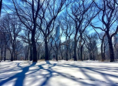 Beautyyyy of a day in the city 👏👏👏 @ New York City http://t.co/KFbAbK2v6c