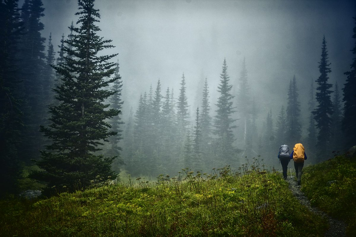 10 Tips For Making Rainy Backpacking Way Better http://t.co/3ziXish54W http://t.co/VICtI5tFE3