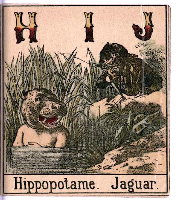 5c015aca2c4f4 19世紀の子供向け 動物アルファベット絵本が殺伐すぎる pic.twitter.com 8l41fIrxs9