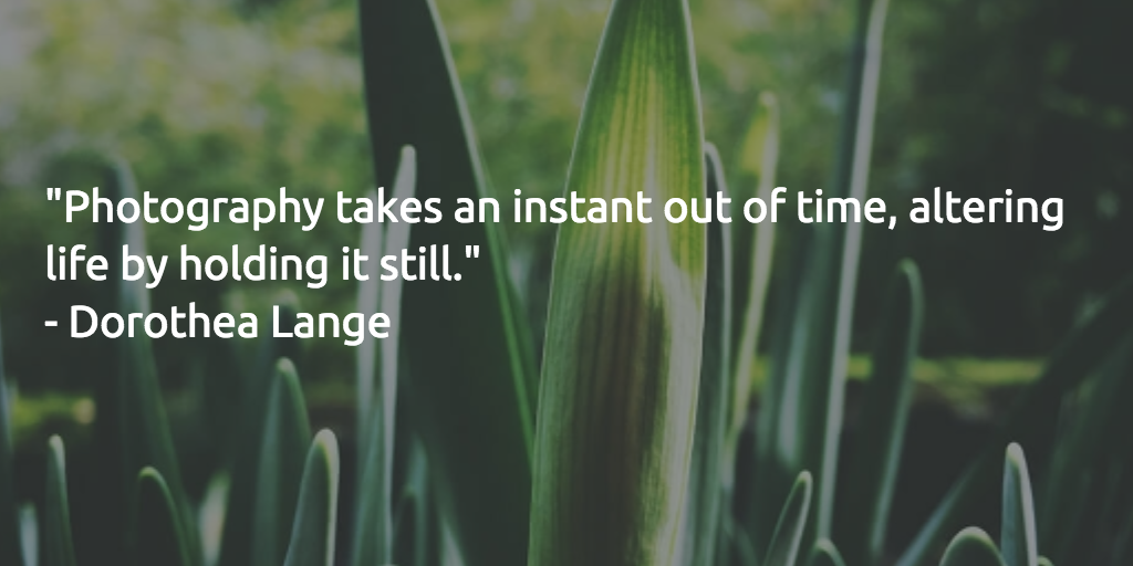 """Photography takes an instant out of time, altering life by holding it still."" - Dorothea Lange http://t.co/QNj0Xz5M6l"
