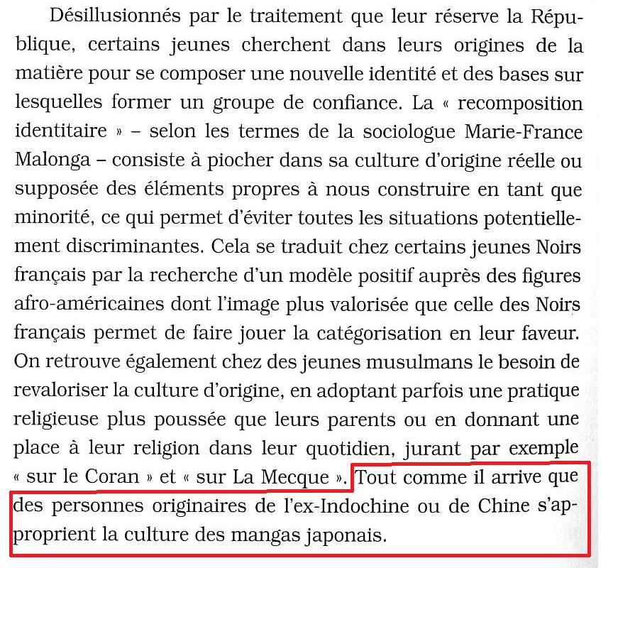 """Rokhaya Diallo : """"Racisme, mode d'emploi"""" page 188 http://t.co/ga458lkIYK"""