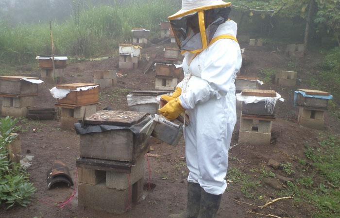 #Pictureit! Woman wrapped up against the honey bees in #Guatemala. Join us 4 #IWD2015 http://t.co/usF9cZyqKT http://t.co/jWGJhoY920