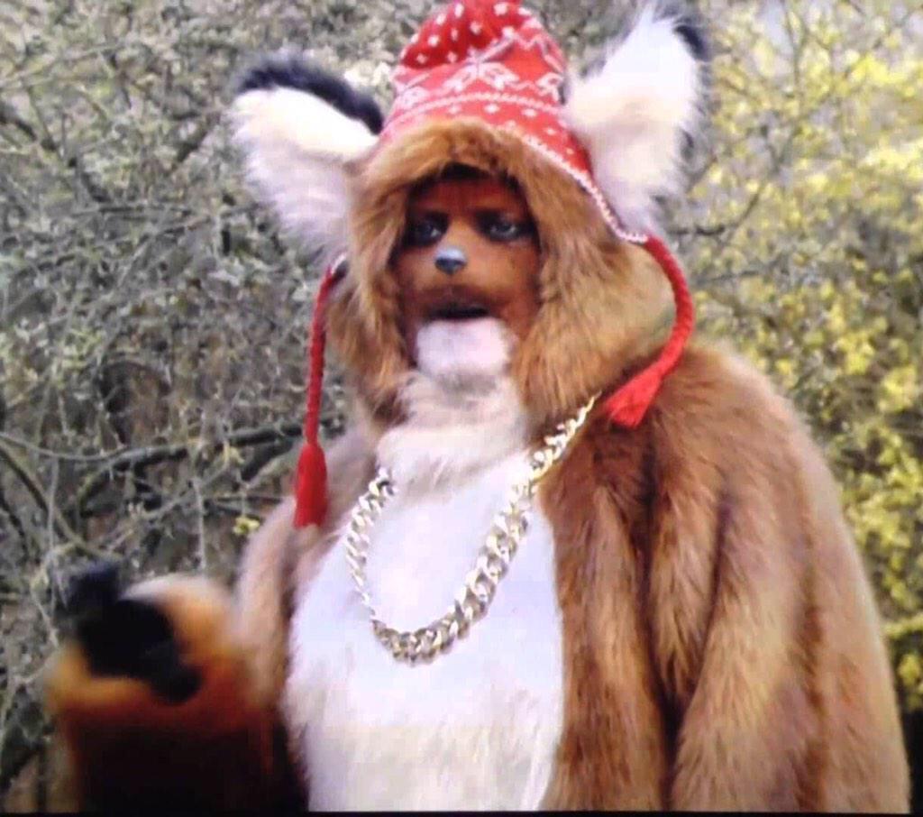 RT @FletcherMoo: @lemontwittor urban fox is bloody brilliant #feralfuckingfox http://t.co/OZHIgtNC9m