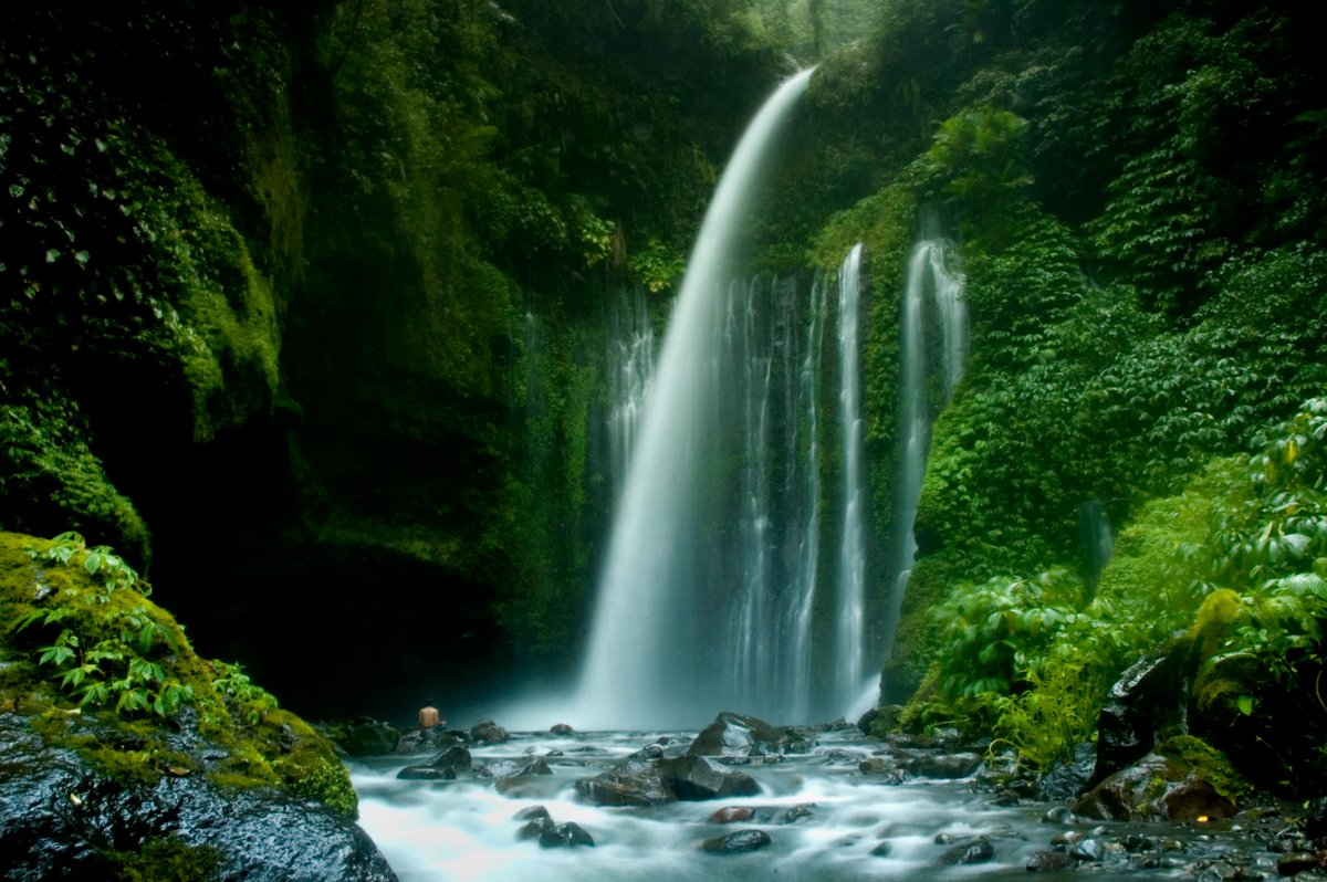 Air Terjun Sendang Gila ini berasal dari mata air Gunung Rinjani yang sangat sejuk dan alami terletak di Lombok utara http://t.co/nnHoKFmtSw