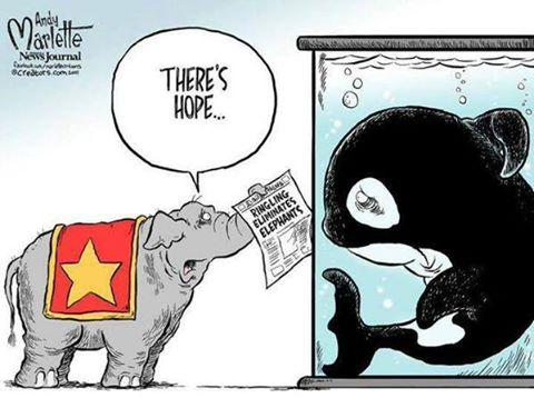 """@GlobalElephants: Possibly best cartoon ever!! http://t.co/HFOA0Zc8h7"""