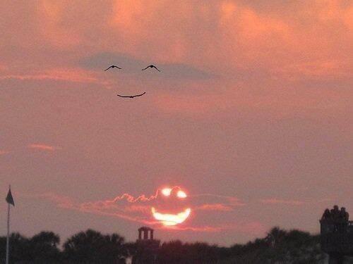 해가 웃으니 새들이 화답한다. http://t.co/s4f3X6aBnX