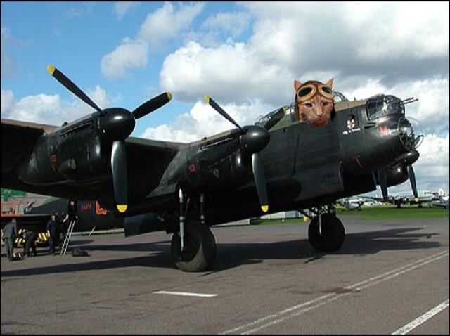 Zulu Oscar 12 reportin in for #TheAviators adventure *zooms to buffet* http://t.co/BVWdSEEGXw