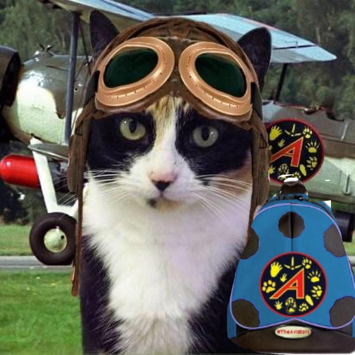Got my Ladybug pack stuffed with noms for the flight #TheAviators @ToddyFur Morning @Ottogingerboy *waves Paws* http://t.co/198iamyD3W