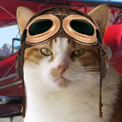 @ToddyFur Yes please Toddy......I like mine milky and sweet....#TheAviators http://t.co/KkLAljWFTk