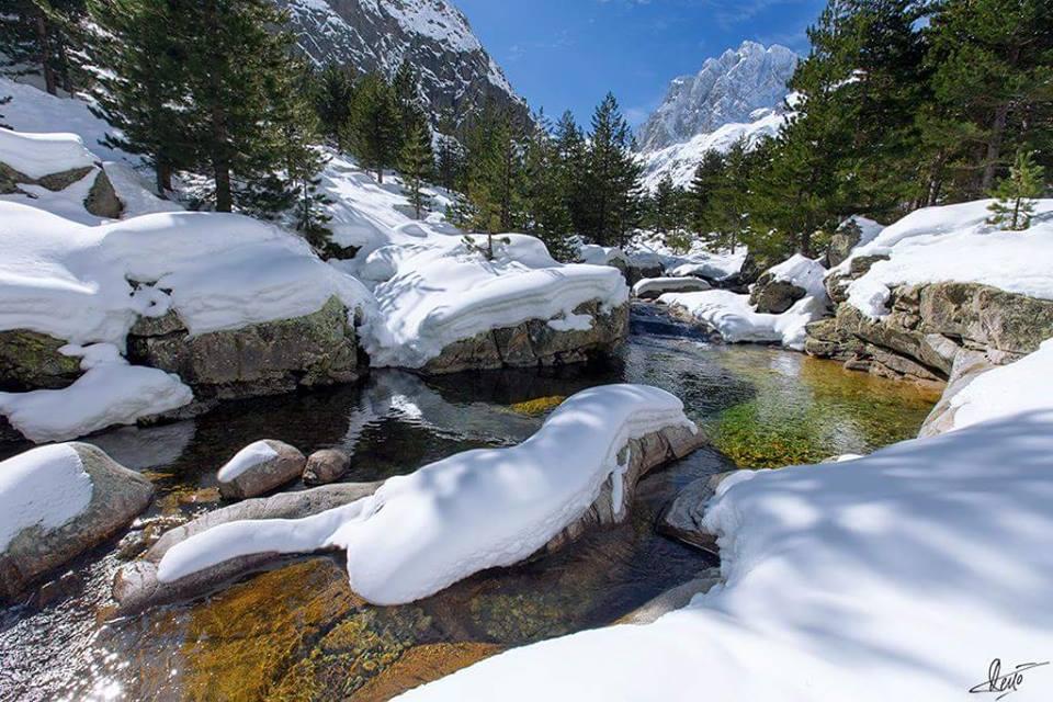 l'hiver ! - Page 2 B_fzoTCWEAAPmiI