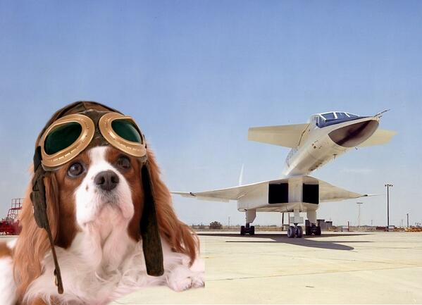 #TheAviators NOOOO! Water in the fuel line. *calls fuel company to complain*! Hurry! I fly in 39 minutes! http://t.co/r5cq4gg5k8