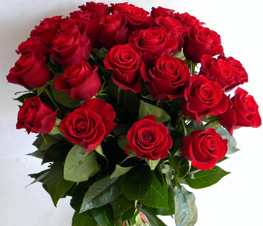 Воскресенье анимация розы менее