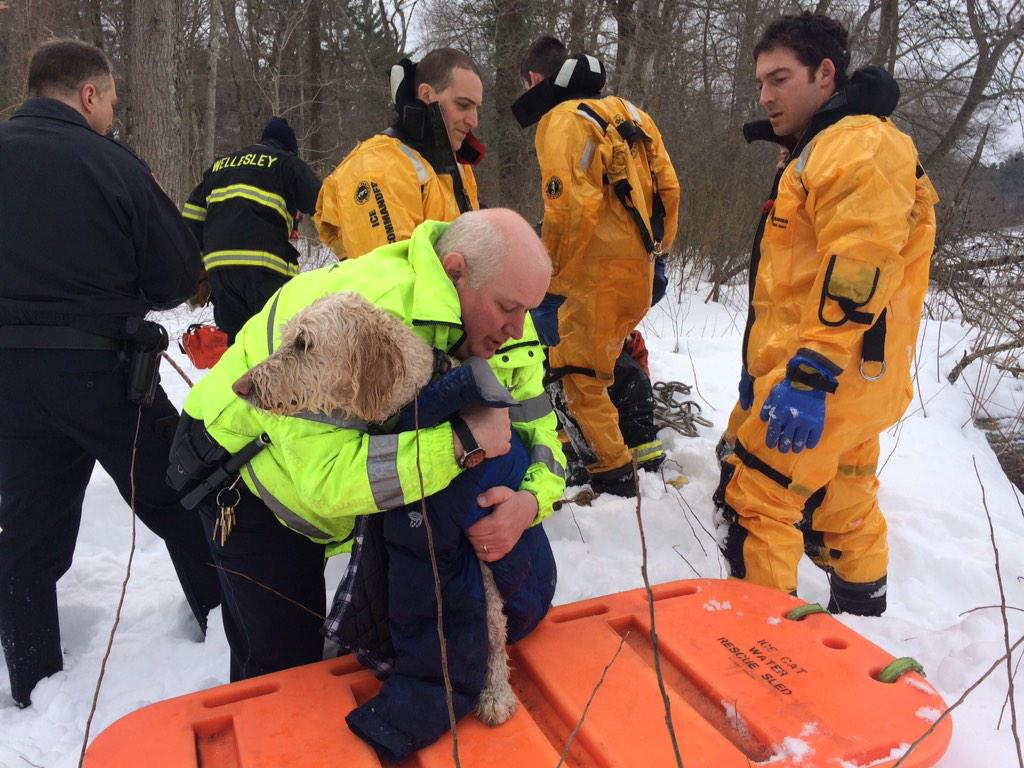 #WPD and #WFD just rescued this dog trapped on the ice at Elm Bank. Everyone is ok. http://t.co/hetibHt8zM