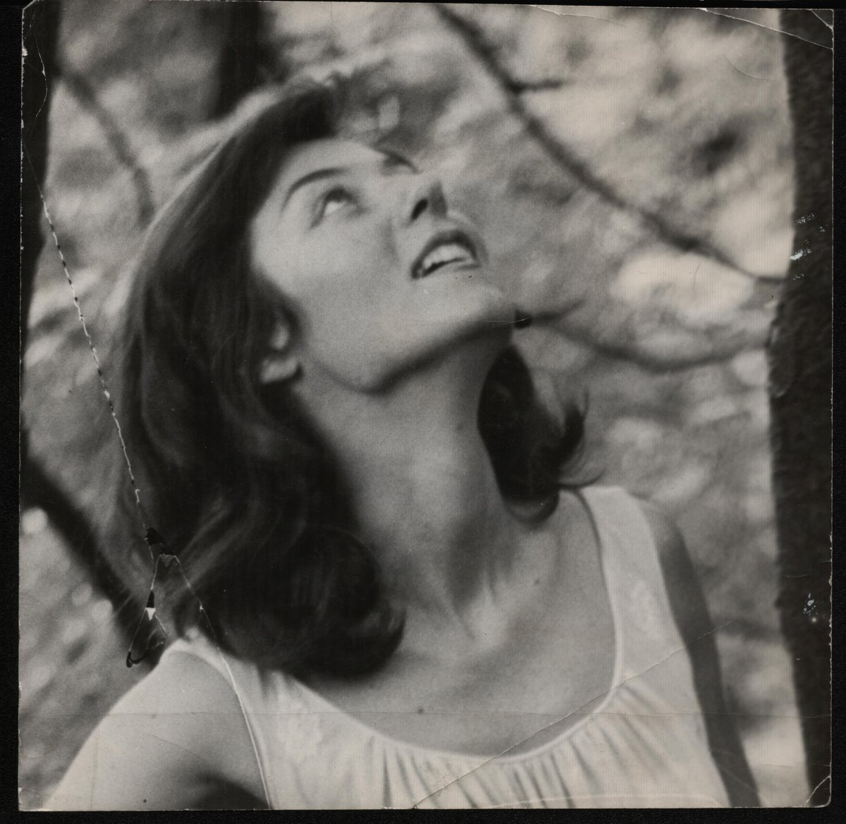Bettina Cirone